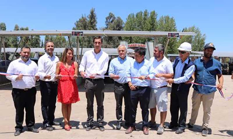 El estacionamiento solar más grande de Chile está en Parque Safari de Rancagua